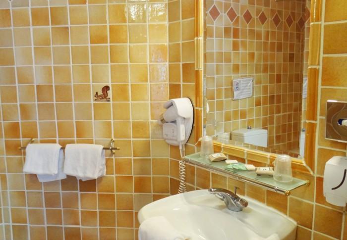 le-mas-des-ecureuils-salle de bain n9