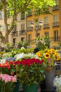 marché aux fleurs place mairie aix en provence