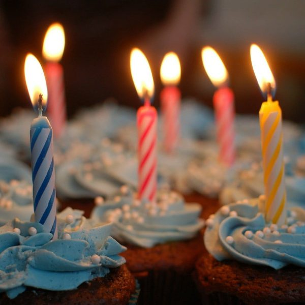 cupcakes-380178_1920